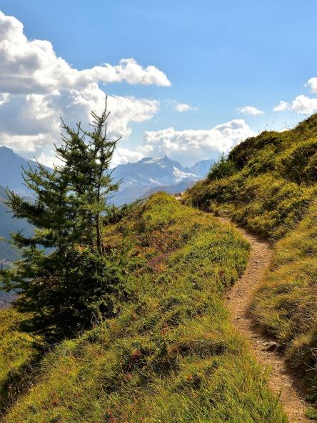 trail-1720008_1920