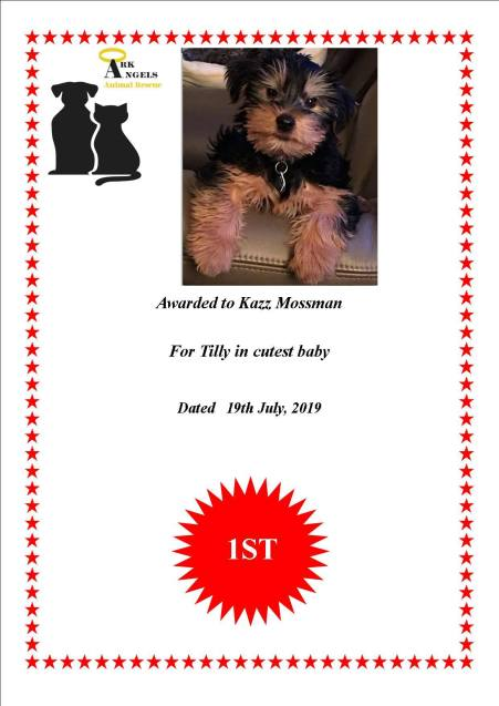 Tilly certificate